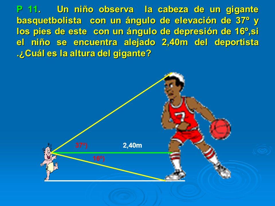 P 11. Un niño observa la cabeza de un gigante basquetbolista con un ángulo de elevación de 37º y los pies de este con un ángulo de depresión de 16º,si