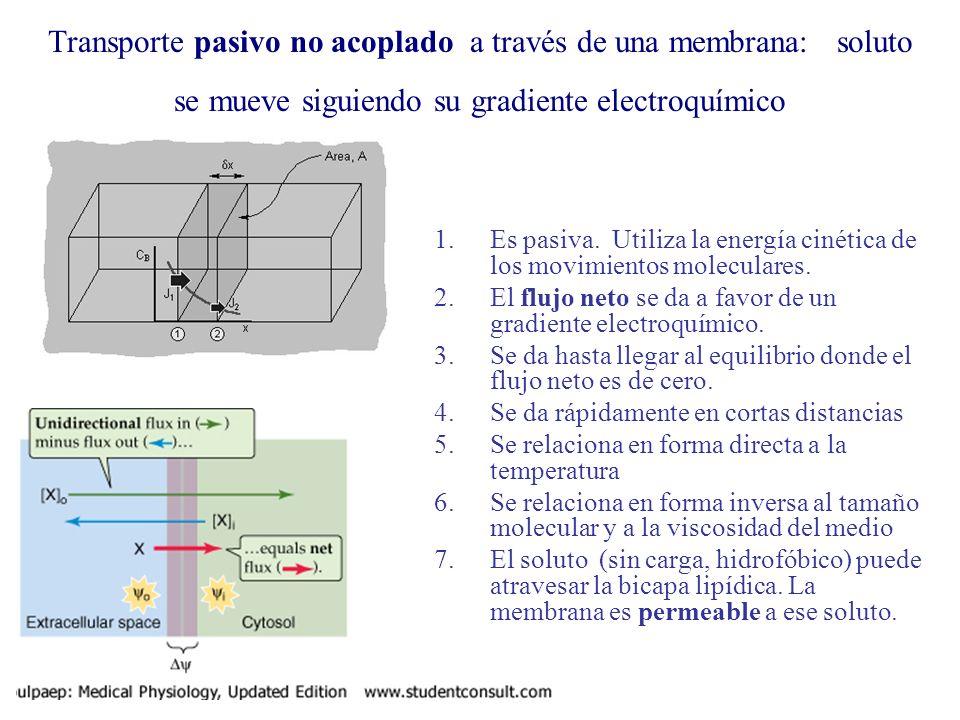 Transporte pasivo no acoplado a través de una membrana: soluto se mueve siguiendo su gradiente electroquímico 1.Es pasiva. Utiliza la energía cinética