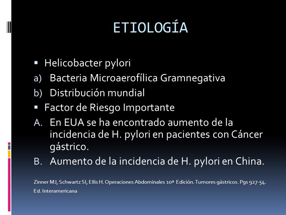 ETIOLOGÍA Helicobacter pylori a) Bacteria Microaerofílica Gramnegativa b) Distribución mundial Factor de Riesgo Importante A. En EUA se ha encontrado