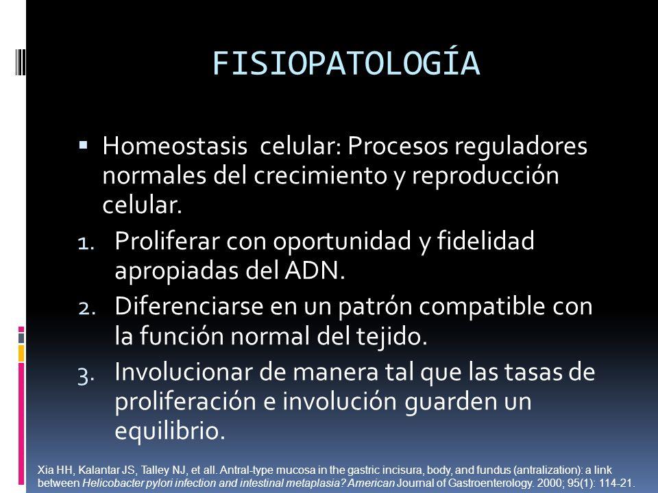 FISIOPATOLOGÍA Homeostasis celular: Procesos reguladores normales del crecimiento y reproducción celular. 1. Proliferar con oportunidad y fidelidad ap