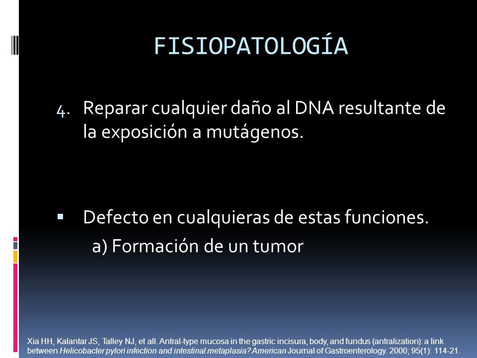 FISIOPATOLOGÍA 4. Reparar cualquier daño al DNA resultante de la exposición a mutágenos. Defecto en cualquieras de estas funciones. a) Formación de un