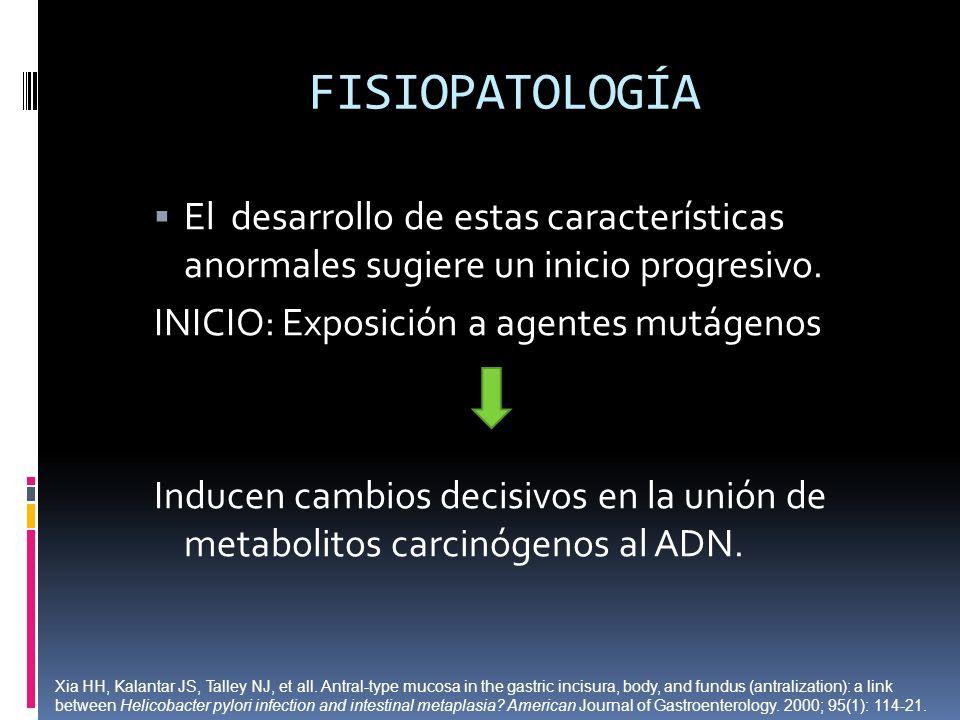 FISIOPATOLOGÍA El desarrollo de estas características anormales sugiere un inicio progresivo. INICIO: Exposición a agentes mutágenos Inducen cambios d