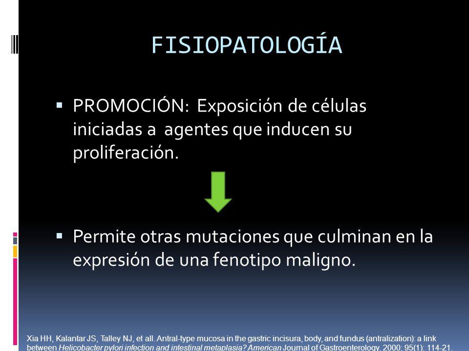 FISIOPATOLOGÍA PROMOCIÓN: Exposición de células iniciadas a agentes que inducen su proliferación. Permite otras mutaciones que culminan en la expresió