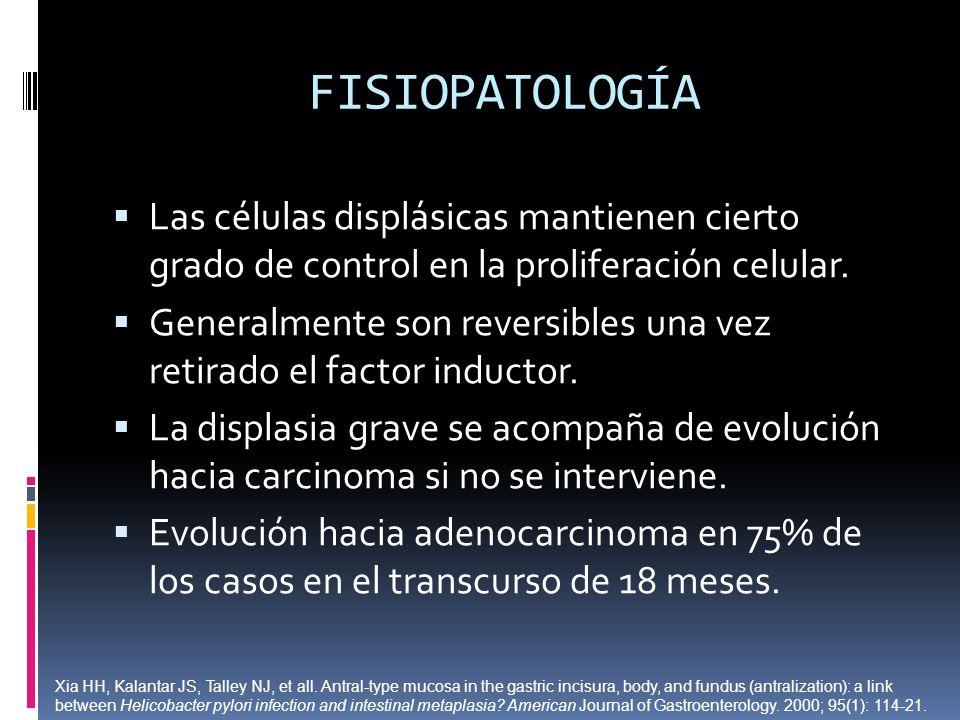 FISIOPATOLOGÍA Las células displásicas mantienen cierto grado de control en la proliferación celular. Generalmente son reversibles una vez retirado el