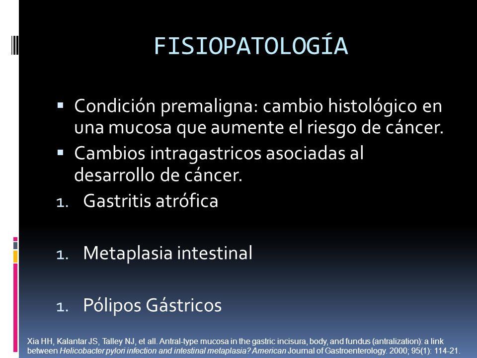 FISIOPATOLOGÍA Condición premaligna: cambio histológico en una mucosa que aumente el riesgo de cáncer. Cambios intragastricos asociadas al desarrollo