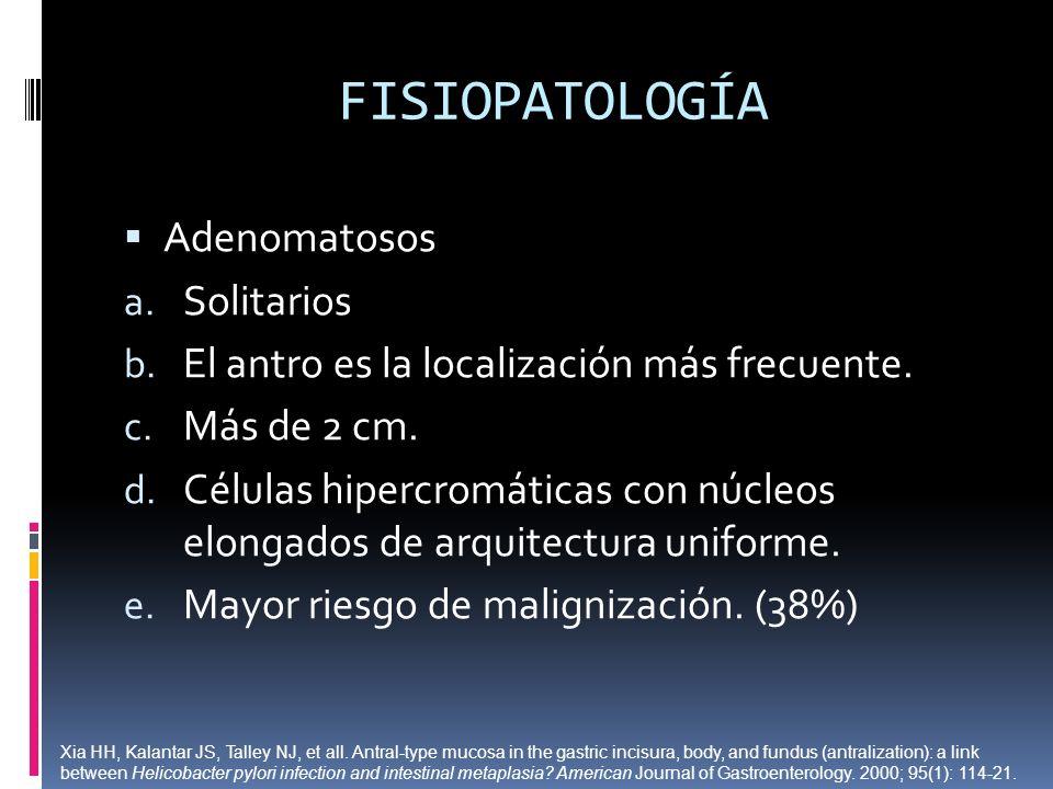 FISIOPATOLOGÍA Adenomatosos a. Solitarios b. El antro es la localización más frecuente. c. Más de 2 cm. d. Células hipercromáticas con núcleos elongad