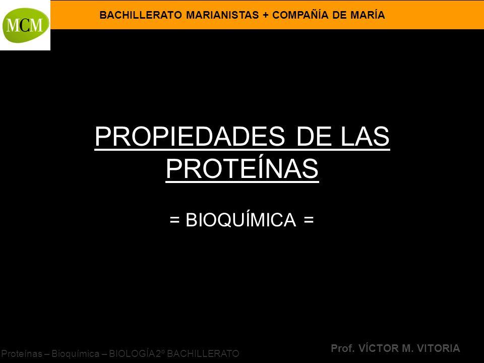 BACHILLERATO MARIANISTAS + COMPAÑÍA DE MARÍA Prof. VÍCTOR M. VITORIA Proteínas – Bioquímica – BIOLOGÍA 2º BACHILLERATO PROPIEDADES DE LAS PROTEÍNAS =