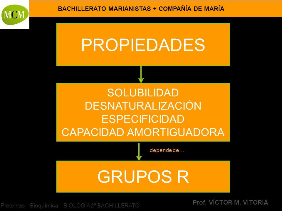 BACHILLERATO MARIANISTAS + COMPAÑÍA DE MARÍA Prof. VÍCTOR M. VITORIA Proteínas – Bioquímica – BIOLOGÍA 2º BACHILLERATO PROPIEDADES SOLUBILIDAD DESNATU