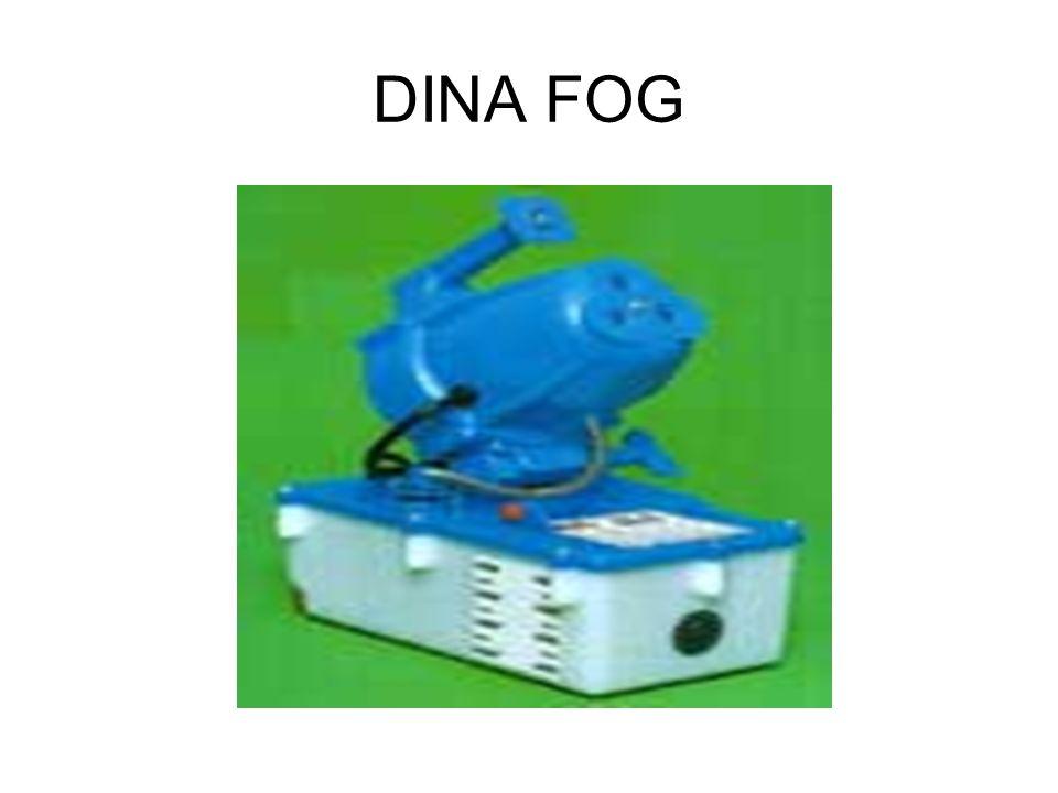 DINA FOG