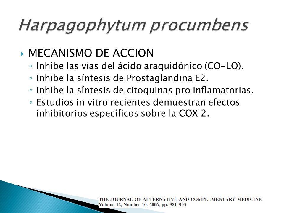 MECANISMO DE ACCION Inhibe las vías del ácido araquidónico (CO-LO). Inhibe la síntesis de Prostaglandina E2. Inhibe la síntesis de citoquinas pro infl