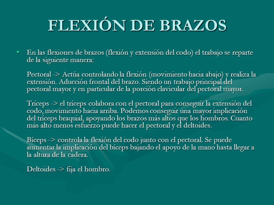 FLEXIÓN DE BRAZOS En las flexiones de brazos (flexión y extensión del codo) el trabajo se reparte de la siguiente manera: Pectoral -> Actúa controland