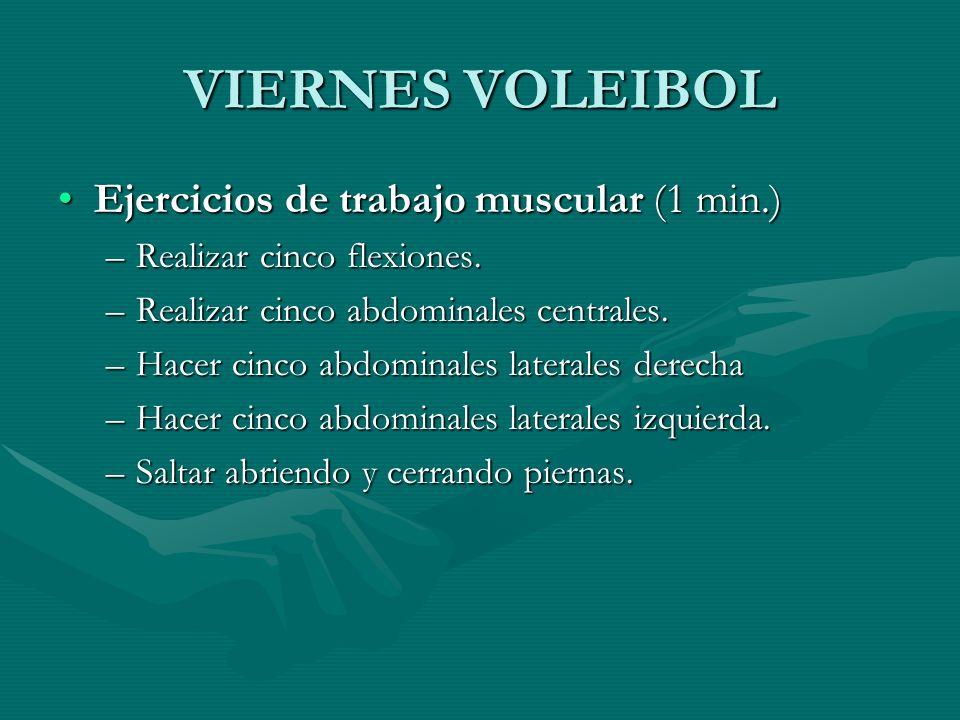 VIERNES VOLEIBOL Ejercicios de trabajo muscular (1 min.)Ejercicios de trabajo muscular (1 min.) –Realizar cinco flexiones. –Realizar cinco abdominales