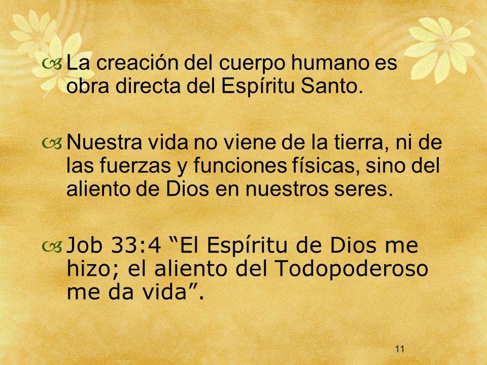 11 La creación del cuerpo humano es obra directa del Espíritu Santo. Nuestra vida no viene de la tierra, ni de las fuerzas y funciones físicas, sino d