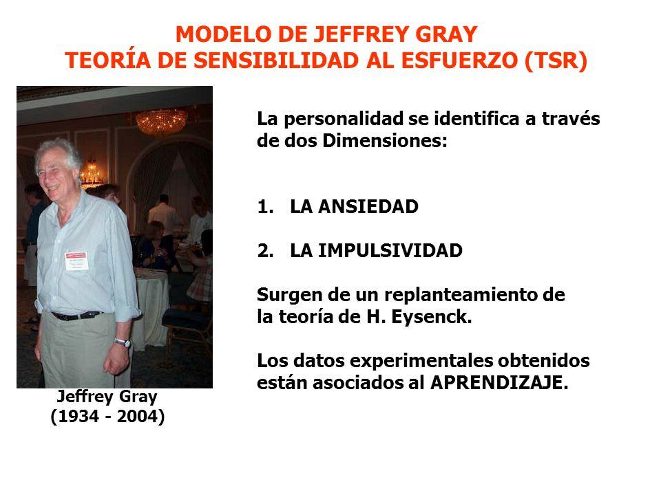 Jeffrey Gray (1934 - 2004) La personalidad se identifica a través de dos Dimensiones: 1.LA ANSIEDAD 2.LA IMPULSIVIDAD Surgen de un replanteamiento de