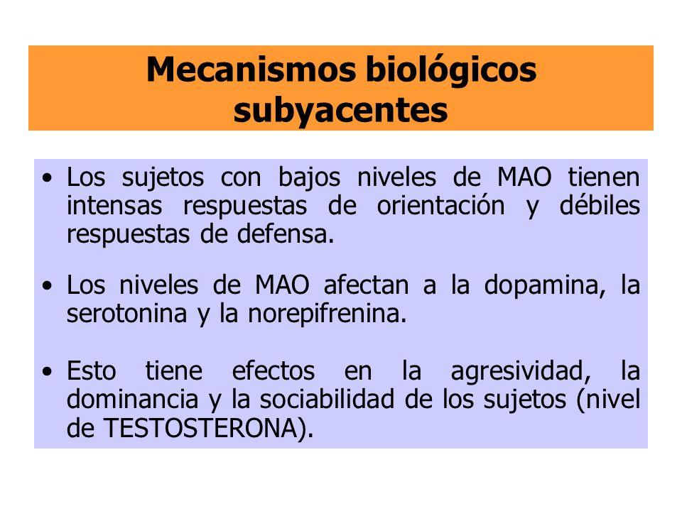 Mecanismos biológicos subyacentes Los sujetos con bajos niveles de MAO tienen intensas respuestas de orientación y débiles respuestas de defensa. Los