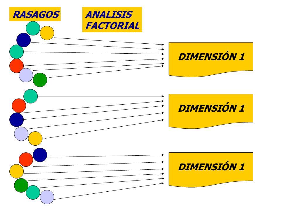 Las cuatro dimensiones del temperamento Persistencia: Representa la voluntad, la capacidad del individuo para mantener proyectos a largo plazo, en ausencia de recompensas inmediatas.