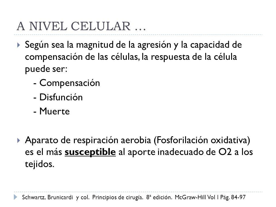 A NIVEL CELULAR … Según sea la magnitud de la agresión y la capacidad de compensación de las células, la respuesta de la célula puede ser: - Compensac