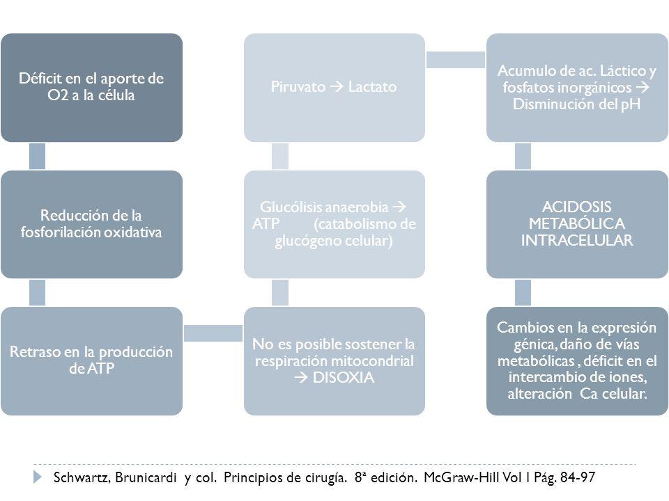 Déficit en el aporte de O2 a la célula Reducción de la fosforilación oxidativa Retraso en la producción de ATP No es posible sostener la respiración m