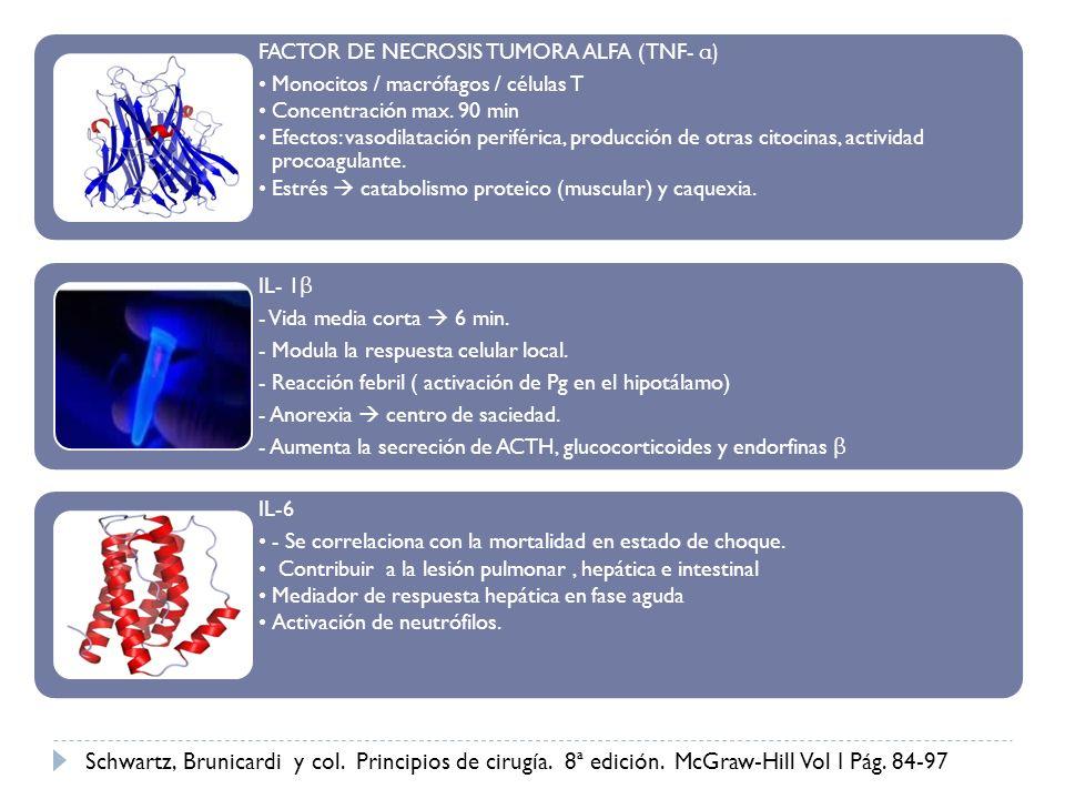 FACTOR DE NECROSIS TUMORA ALFA (TNF- α) Monocitos / macrófagos / células T Concentración max. 90 min Efectos: vasodilatación periférica, producción de