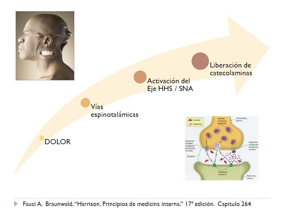 DOLOR Vías espinotalámicas Activación del Eje HHS / SNA Liberación de catecolaminas Fauci A, Braunwald. Harrison. Principios de medicina interna. 17ª