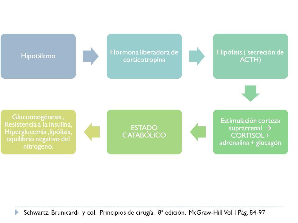 Hipotálamo Hormona liberadora de corticotropina Hipófisis ( secreción de ACTH) Estimulación corteza suprarrenal CORTISOL + adrenalina + glucagón ESTAD