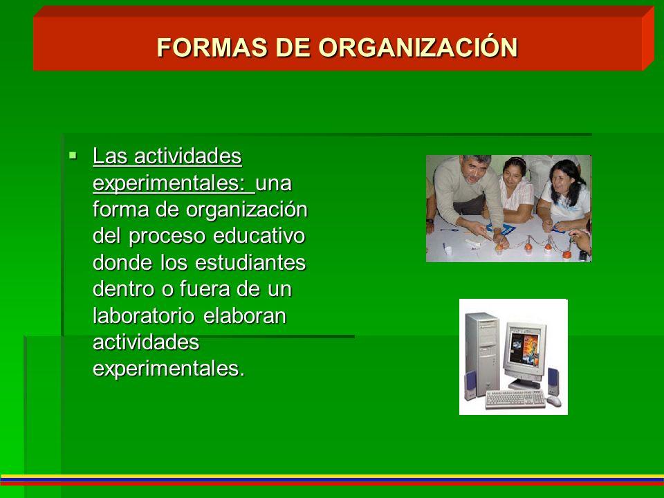 FORMAS DE ORGANIZACIÓN Las actividades experimentales: una forma de organización del proceso educativo donde los estudiantes dentro o fuera de un labo