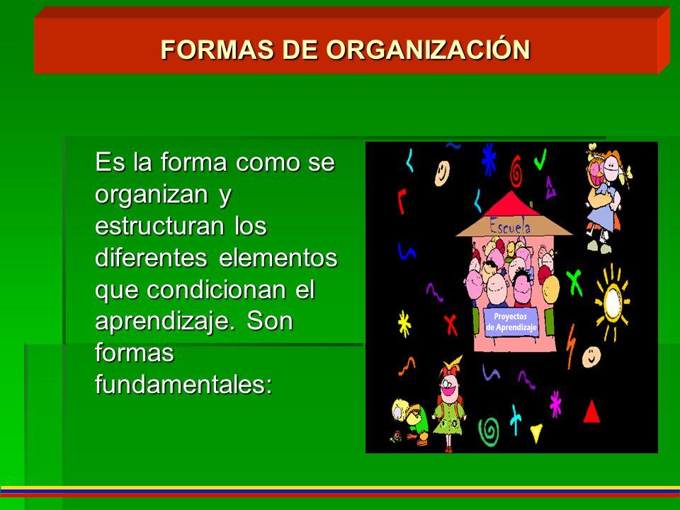 FORMAS DE ORGANIZACIÓN Es la forma como se organizan y estructuran los diferentes elementos que condicionan el aprendizaje. Son formas fundamentales: