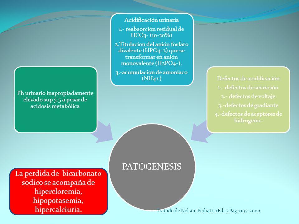 PATOGENESIS Ph urinario inapropiadamente elevado sup 5.5 a pesar de acidosis metabólica Acidificación urinaria 1.- reabsorción residual de HCO3- (10-2
