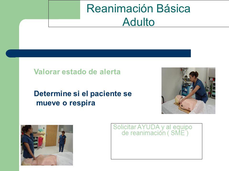 Reanimación Básica Adulto Solicitar AYUDA y al equipo de reanimación ( SME ) Valorar estado de alerta Determine si el paciente se mueve o respira
