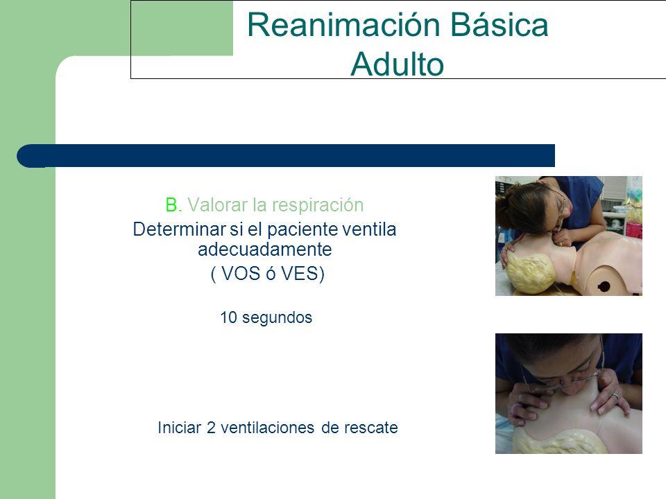 Reanimación Básica Adulto B. Valorar la respiración Determinar si el paciente ventila adecuadamente ( VOS ó VES) 10 segundos Iniciar 2 ventilaciones d