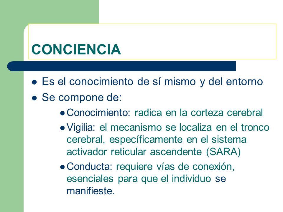 CONCIENCIA Es el conocimiento de sí mismo y del entorno Se compone de: Conocimiento: radica en la corteza cerebral Vigilia: el mecanismo se localiza e