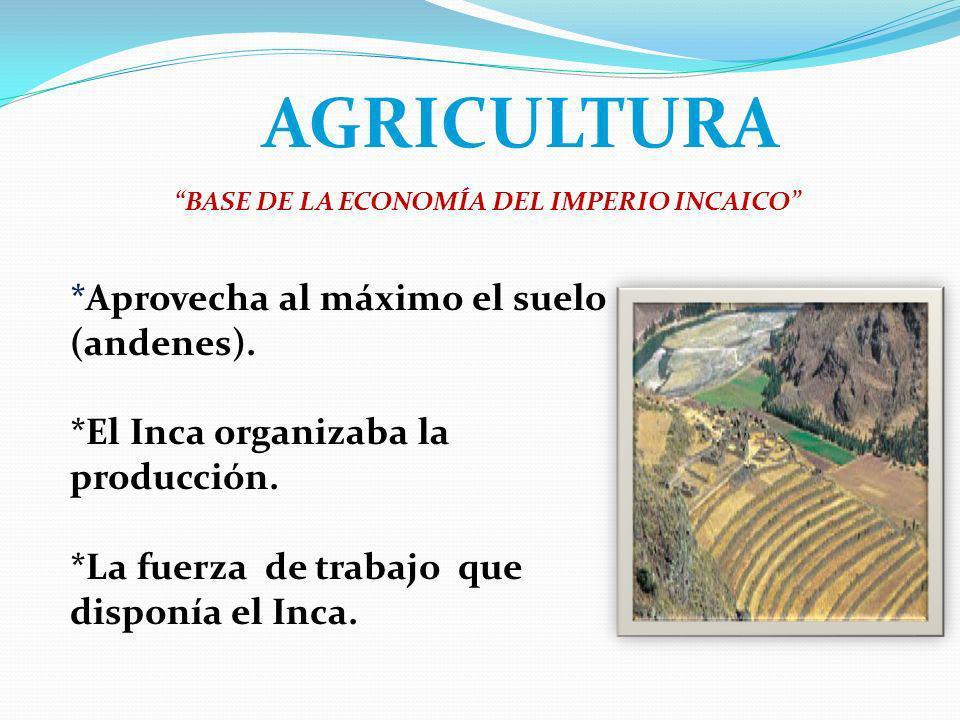 AGRICULTURA *Aprovecha al máximo el suelo (andenes). *El Inca organizaba la producción. *La fuerza de trabajo que disponía el Inca. BASE DE LA ECONOMÍ