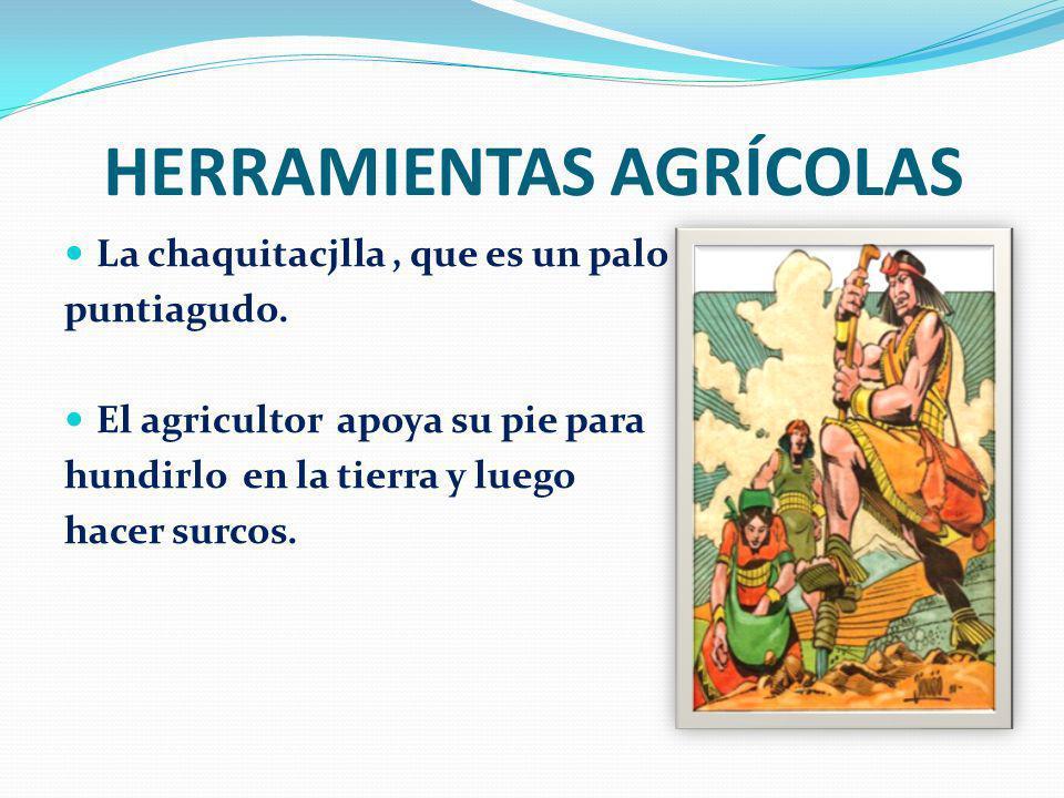 HERRAMIENTAS AGRÍCOLAS La chaquitacjlla, que es un palo puntiagudo. El agricultor apoya su pie para hundirlo en la tierra y luego hacer surcos.