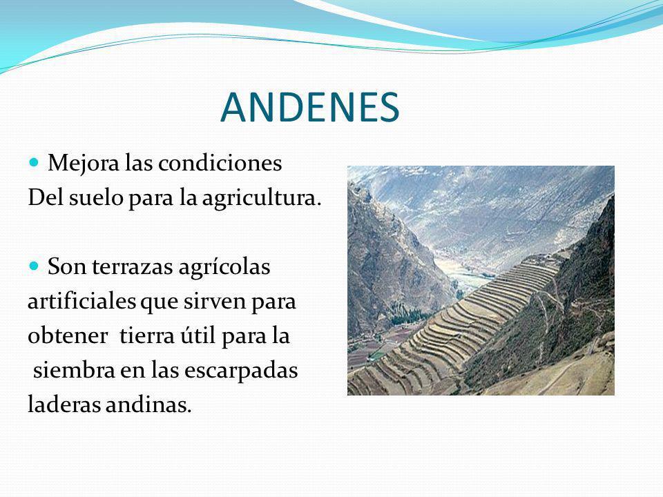 ANDENES Mejora las condiciones Del suelo para la agricultura. Son terrazas agrícolas artificiales que sirven para obtener tierra útil para la siembra