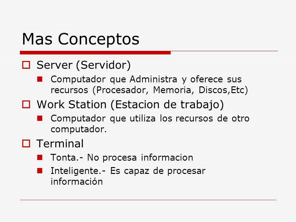 Ambiente MultiUsuario Server W.S.