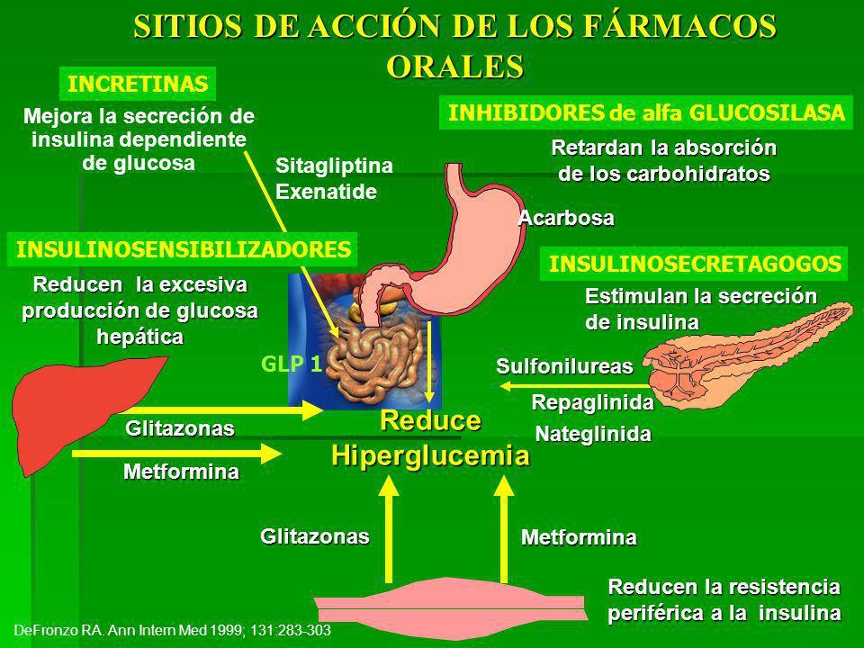 SITIOS DE ACCIÓN DE LOS FÁRMACOS ORALES Reduce Hiperglucemia Estimulan la secreción de insulina Sulfonilureas Reducen la resistencia periférica a la insulina Glitazonas Metformina RepaglinidaNateglinida Reducen la excesiva producción de glucosa hepática Metformina Glitazonas DeFronzo RA.