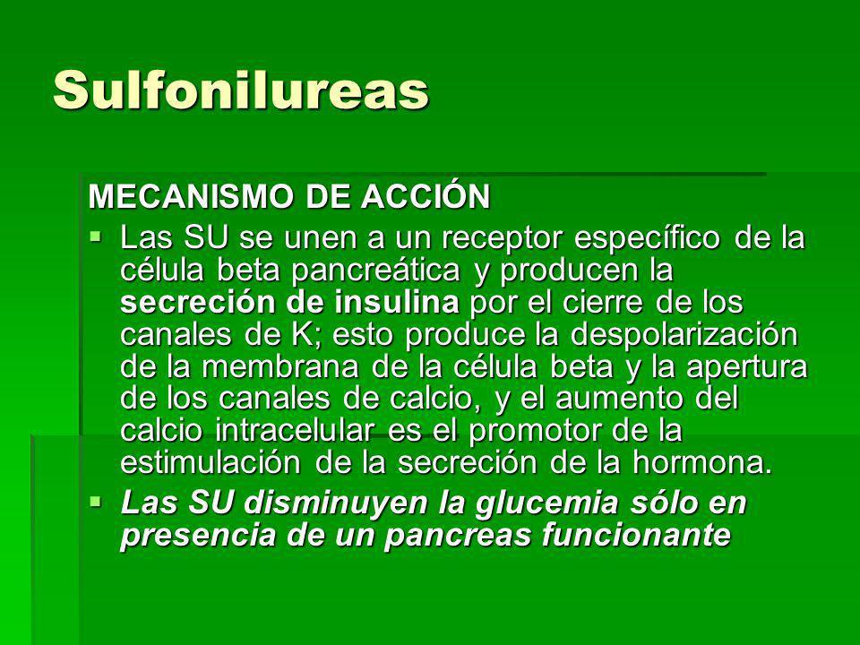 Sulfonilureas MECANISMO DE ACCIÓN Las SU se unen a un receptor específico de la célula beta pancreática y producen la secreción de insulina por el cierre de los canales de K; esto produce la despolarización de la membrana de la célula beta y la apertura de los canales de calcio, y el aumento del calcio intracelular es el promotor de la estimulación de la secreción de la hormona.