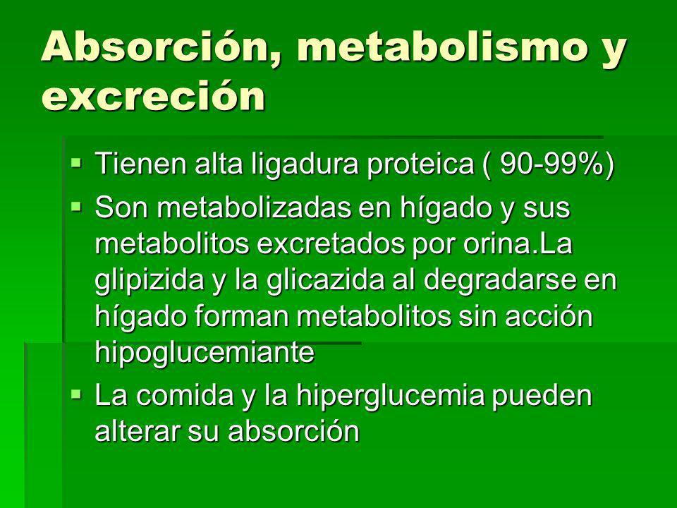 Absorción, metabolismo y excreción Tienen alta ligadura proteica ( 90-99%) Tienen alta ligadura proteica ( 90-99%) Son metabolizadas en hígado y sus metabolitos excretados por orina.La glipizida y la glicazida al degradarse en hígado forman metabolitos sin acción hipoglucemiante Son metabolizadas en hígado y sus metabolitos excretados por orina.La glipizida y la glicazida al degradarse en hígado forman metabolitos sin acción hipoglucemiante La comida y la hiperglucemia pueden alterar su absorción La comida y la hiperglucemia pueden alterar su absorción