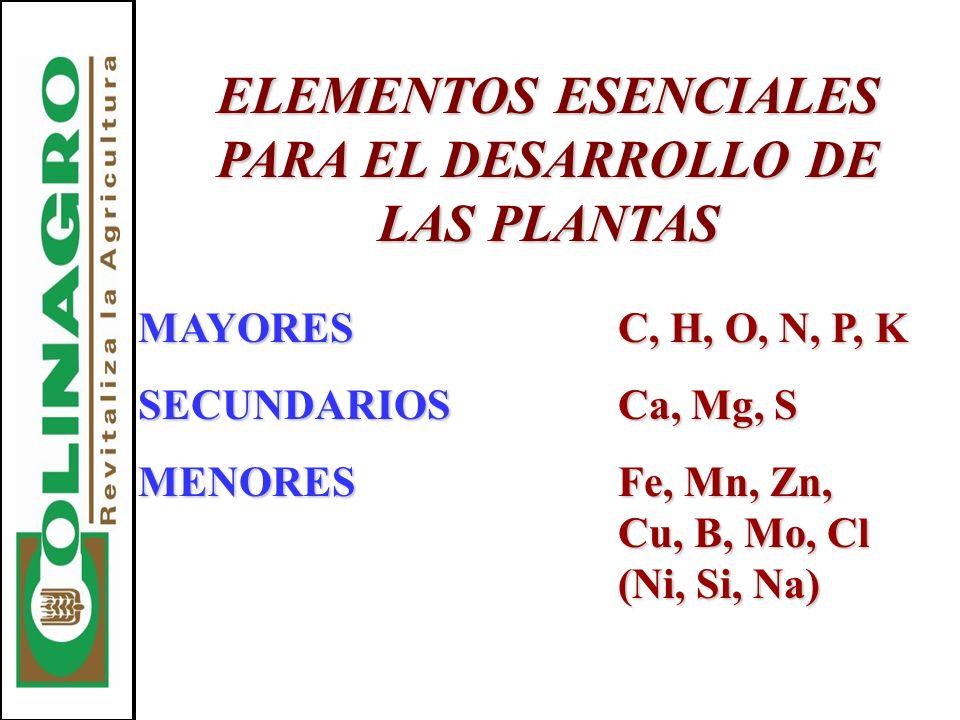 ELEMENTOS ESENCIALES PARA EL DESARROLLO DE LAS PLANTAS MAYORESC, H, O, N, P, K SECUNDARIOSCa, Mg, S MENORESFe, Mn, Zn, Cu, B, Mo, Cl (Ni, Si, Na)