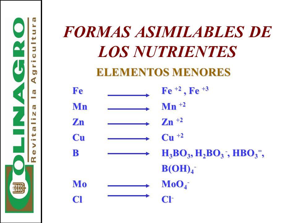 FORMAS ASIMILABLES DE LOS NUTRIENTES ELEMENTOS MENORES FeFe +2, Fe +3 MnMn +2 ZnZn +2 CuCu +2 BH 3 BO 3, H 2 BO 3 -, HBO 3 =, B(OH) 4 - MoMoO 4 - ClCl