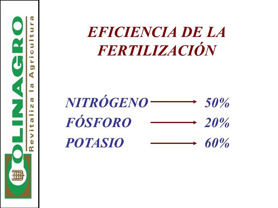 EFICIENCIA DE LA FERTILIZACIÓN NITRÓGENO50% FÓSFORO20% POTASIO60%