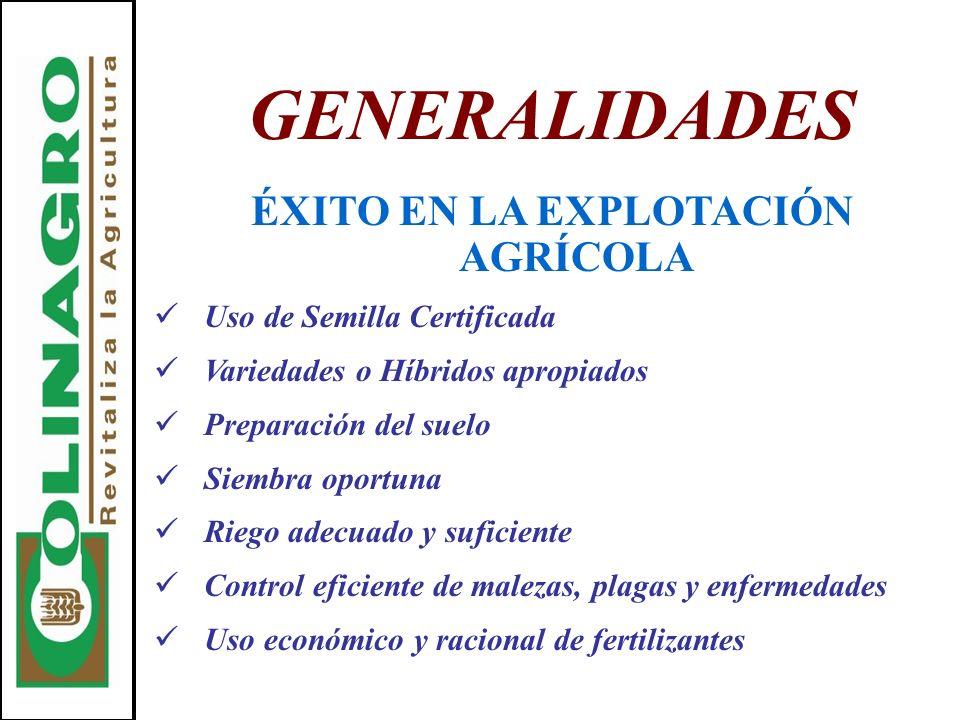 GENERALIDADES ÉXITO EN LA EXPLOTACIÓN AGRÍCOLA Uso de Semilla Certificada Variedades o Híbridos apropiados Preparación del suelo Siembra oportuna Rieg