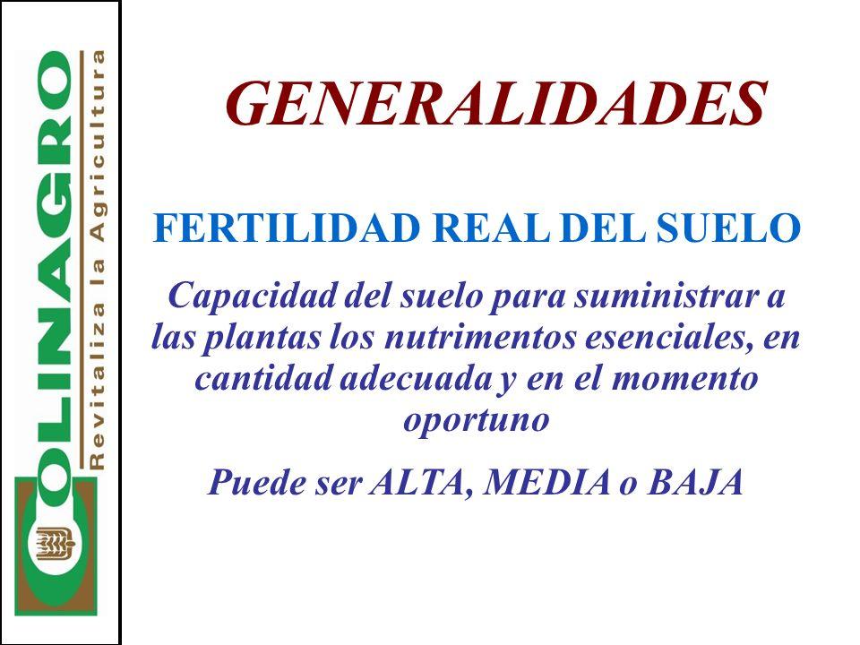GENERALIDADES FERTILIDAD REAL DEL SUELO Capacidad del suelo para suministrar a las plantas los nutrimentos esenciales, en cantidad adecuada y en el mo