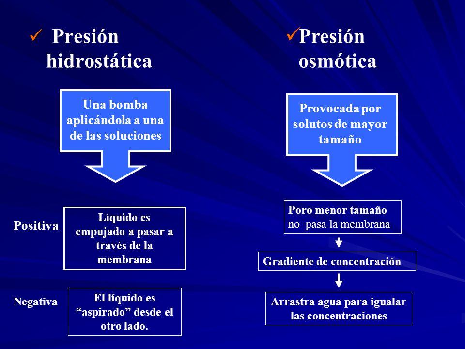 Presión hidrostática Presión osmótica Una bomba aplicándola a una de las soluciones Positiva Líquido es empujado a pasar a través de la membrana Negat