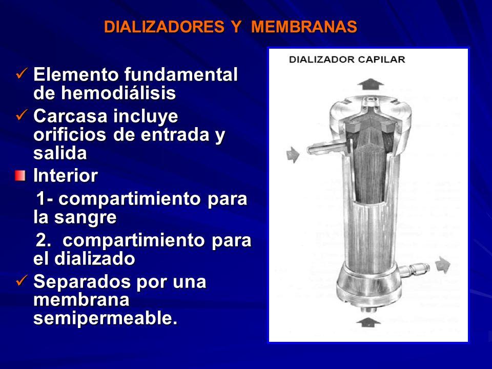 Elemento fundamental de hemodiálisis Elemento fundamental de hemodiálisis Carcasa incluye orificios de entrada y salida Carcasa incluye orificios de e