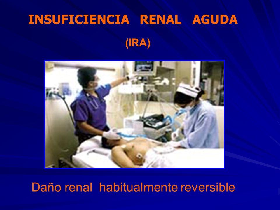 ATENCION AL PACIENTE EN HEMODIALISIS NEFROLOGO NUTRICIONISTA PSICOLOGA TRABAJADORA SOCIAL ENFERMERA ESPEC.