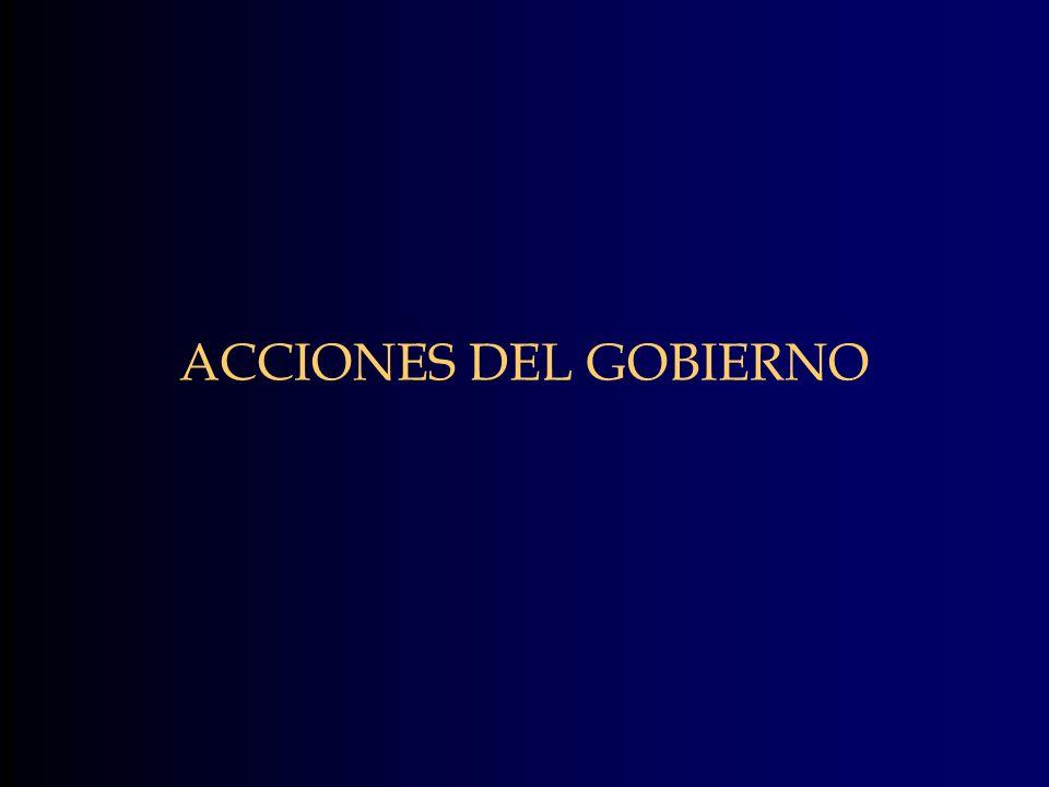 ACCIONES DEL GOBIERNO