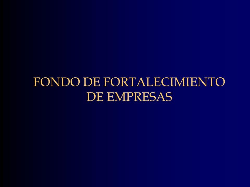 FONDO DE FORTALECIMIENTO DE EMPRESAS