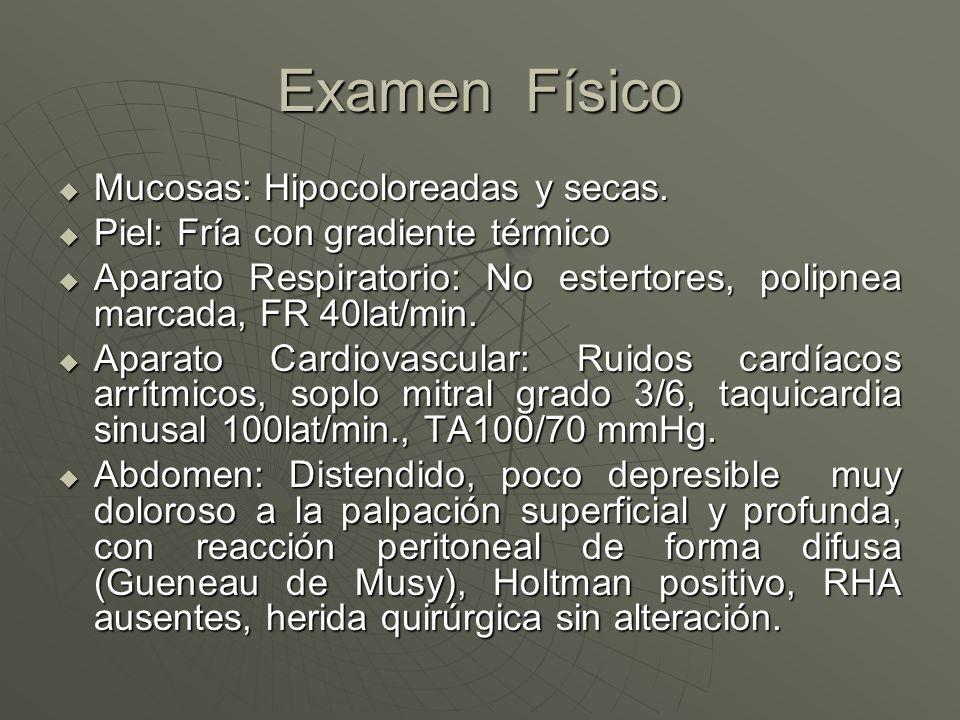 Examen Físico Mucosas: Hipocoloreadas y secas. Mucosas: Hipocoloreadas y secas. Piel: Fría con gradiente térmico Piel: Fría con gradiente térmico Apar