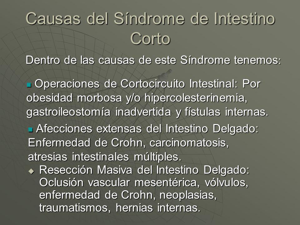 Causas del Síndrome de Intestino Corto Resección Masiva del Intestino Delgado: Oclusión vascular mesentérica, vólvulos, enfermedad de Crohn, neoplasia